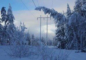 VAKKERT: Snø og vinter er vakkert. Her har et tre lagt seg over linjene. Det kan bety trøbbel og strømbrudd. Foto: Skagerak Energi