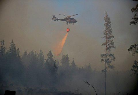 STOR SKOGBRANNFARE: Over hele Østlandet er det for tiden stor fare for skog- og gressbrann. Her fra skogbrann ved Kongsberg tidligere denne uken.