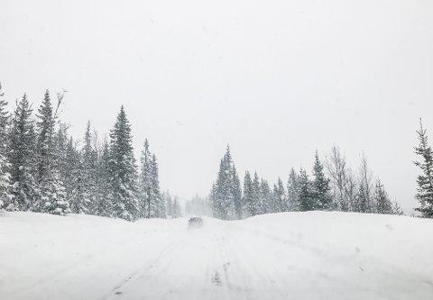 Snø: Det kan se ut til at det blir snø til jul i år. Illustrasjonsfoto: Ragnhild Øistad / NTB scanpix