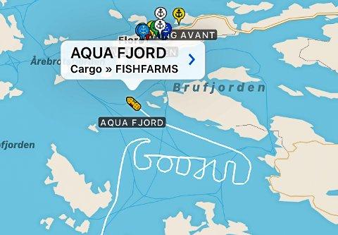 Mannskapet på Aqua Fjord sende si heilt spesielle julehelsing til kollegaer og andre som følgjer med på AIS'en. F.v. matros Elise Vilnes, matroslærling Even Johnsen, overstyrmann Anders Ludvigsen og kaptein Kim André Eikenes.