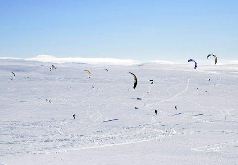 Kite-eldorado: Kitere ved Dyranut på Hardangervidda. Statens vegvesen har sett seg lei på at enkelte kitere krysser riksvegen, fra brøytekant til brøytekant, ofte like foran brøytebiler og annen trafikk. Arkivfoto: Kristin Eide