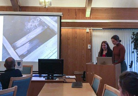 Bading: Måndag tala ungdomsrådet i Eidfjord til formannskapet om nytting av brygga som badeplass og at dei ønskjer tryggare tilhøve langs brygga.Foto: Privat