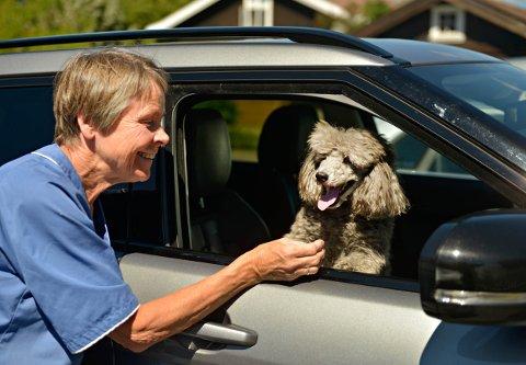 VETERINÆR: Veterinær dyrlege Oddveig Stevning og hunden Storm