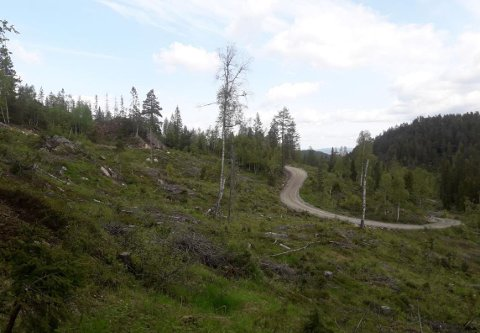 """FLERE HYTTER: I blant annet dette området planlegges det nye hytter og hyttefortetting på Blefjell. Bildet er fra regulerinsplanen """"Lie-Åsland""""."""