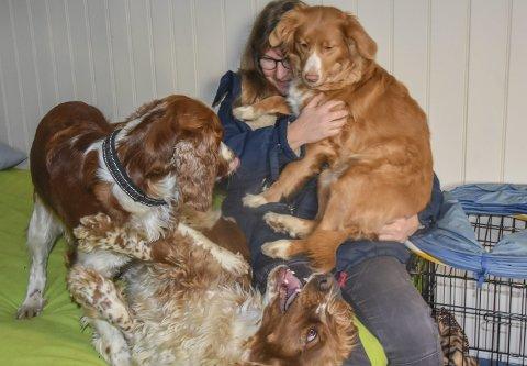 Lek og kos: Inne i hundehuset er det rom for både kos, lek og avslapning. Her har hundene funnet forskjellige måter å få Kirsti Marie Lager Lyngås' oppmerksomhet på. F.v. Kassie, Milli og Trulte, sitenvnte er Kirsti Maries egen hund.