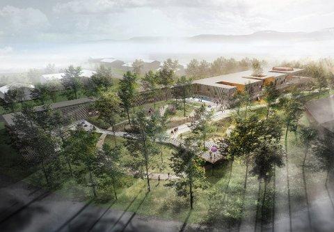 TODELT TILBUD: En ny barnehage skal bygges med seks barneboliger i underetasjen. Kommunens nye tilbud til multihandikappede barn skal ligge på Gimle.