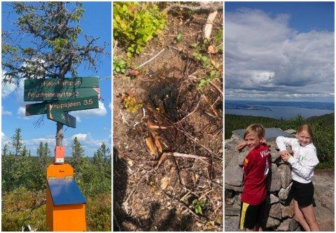 NESTEN SKOGBRANN: Emrik Molstad Antonsen og søsteren Adele Molstad Antonsen på toppen av Totenåsen med utsikt over Mjøsa. På veien hjemover oppdaget de det som var tilløp til skogbrann ved en rasteplass.