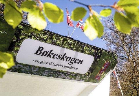 Grønn som alltid: Skauen er grønn, festplassen holder vekta av 10.000 gjester og Bøkekroa legger aller kluter til. Foto: Nils-Erik Kvamme