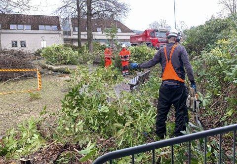 TO MÅNEDER: Veidekke satte i gang arbeidet i Dina Bergs Hage mandag 12. april. Hele prosjektet skal ifølge kommunen ferdigstilles i juni.