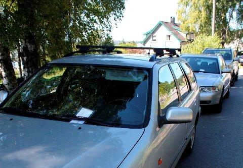 SANNE VISA OM IGJEN: Ulovlig parkering langs Bergsbygdavegen er ikke noe nytt. Her er bildet fra en sak i PD i 2008, der samtlige biler ble ilagt parkeringsbot ved Røra. Det samme har gjentatt seg hver sommer. Torsdag denne uka var det 30 bileiere som fikk bot på Røra og ved Brønnstadbukta.
