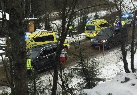 TO OMKOM: Et ektepar i 60-årene mistet livet i frontkollisjonen med et vogntog på E6 ved Bjørnbærvika i fjor. Foto: Viktor Leeds Høgseth