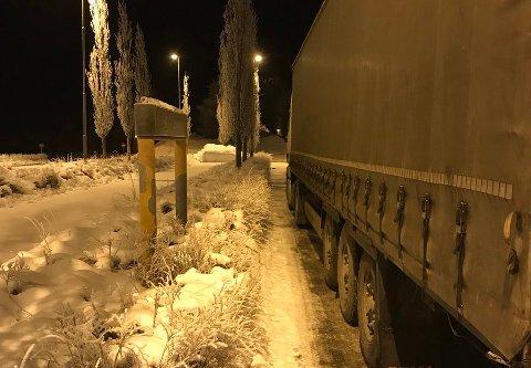 MED SOMMERDEKK: Dette vogntoget fra Polen ble stoppet med fire sommerdekk.
