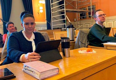ENGASJERTE: Opposisjonen og Høyre markerte seg i utvalget, Helene Røsholt og Stein Erik Amlie.