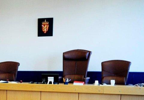 BETINGET FENGSEL OG SAMFUNNSTJENESTE: Etter en privatfest i Larvik er en 24-åring fra Tønsberg og en 25-åring fra Sandefjord dømt for tyveri og kroppskrenkelser, samt vold og trusler mot offentlige tjenestemenn.