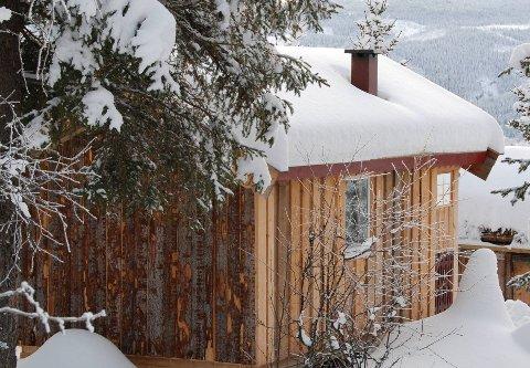 Skogskoier: I Sør-Aurdal er det ei hundretals skogskoier. Skal dei stå og forfalle eller kunna gjerast om til permanente hytter?Illustrasjonsfoto: Tor Harald Skogheim