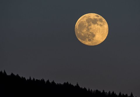 SUPERMÅNE: Dette er ett av bildene Ivar Lamo tok av supermånen. I forgrunnen skimtes deler av Holterkollen.
