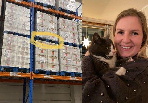 PÅ RETT HYLLE: Katten Göran ble funnet mellom paller med baguetter på Kalbakken. Her er han sammen med Lisa Linnéa Aune, som fant ham.