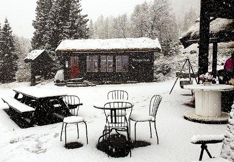 JULESTEMNING: – På grunn av snøfallet er det nå mer jul enn høst på Tempelseter, sier vertinnen på Tempelseter Fjellstue, Anne-Ki Magraff.