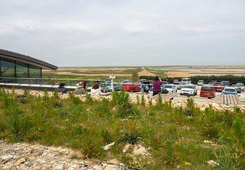 Gode fasiliteter: Cley Marshes besøkssenter i Norfolk, England finner besøkende blant annet informasjon, kafeteria, suvenirer. Bildet viser den fine utsikten.