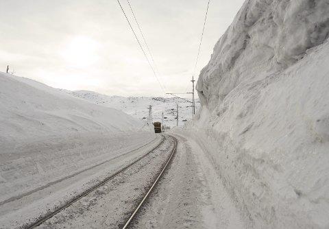 Kommer stille: Når toget kommer, skjer det stille. Vintersnøen demper lysene, og du har sjelden noe forvarsel. Blir du overrumplet her, kan prisen bli høy. Foto: Terje Næsje