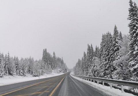 SNØ: Søndag mørgen var det snøføre over Lygna.