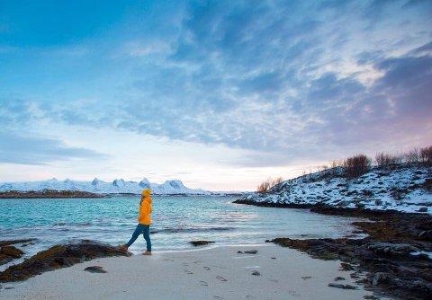 Det er den flotte naturen på Helgeland, som har fått Asbjørn Anderssen og samboer Cathrine Jensen, til å samle inn tonnesvis av søppel gjennom organisasjonen Clean Shores Global. Nå har Sandnessjøen, Herøy og Dønna fått sin egen lokale gruppe: 'Clean Shores Sandnessjøen, Herøy og Dønna'.