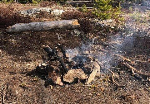 INGEN RØYK UTEN ILD: Dette synet møtte Per Aurstad da han var på skogstur onsdag.