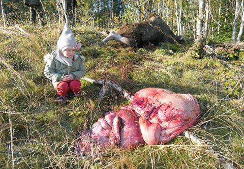 Adele (4) har egentlig aldri sett en elg før. I hvert fall ikke inni.