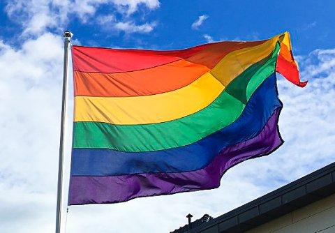 Mange andre kommuner har flagget med regnbueflagget de siste dagene, nå skal det vaie over Tinghaug