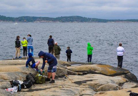 PÅ FISKESKOLE: Ni deltakere fisket på Folehavna.