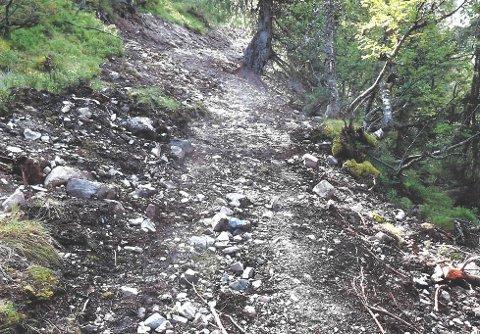 SLIPPER BØTER: Grunneierne som bygde den ulovlige drifteveien slipper nå 1000 kroner dagen i tvangsmulkt.