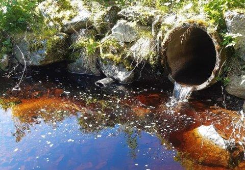 Her er det ifølge en turgåer stopp for fisken som vil opp for å gyte i sidebekken til Ulsetelva. Bildet er tatt av turgåeren og lagt ved bekymringsmeldingen.