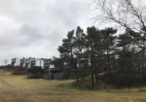 Her ser ein korleis Kåre Frølichs husrekker bølgjer seg i kona Torborgs bølgjande landskap.  Kanhende gav desse bølgjene sjømennene på                                            Hesjaholtet roen. FOTO: NICHOLAS  H. MØLLERHAUG