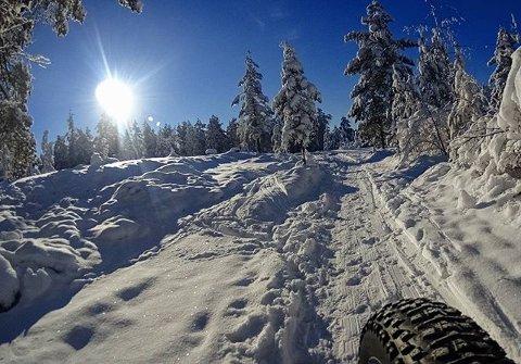 FORSVINNER SNART: Mange var ute og nøt det flotte vinterværet i helgen. Dette bildet er tatt ved Ulevann. Se flere flotte vinterbilder på Drammens Tidendes instagramkonto #dtavis