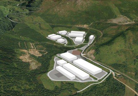 STEMTE FOR: Kommunestyret i Narvik stemte torsdag for reguleringsplanen for mulig datasenter i Bjerkvik.