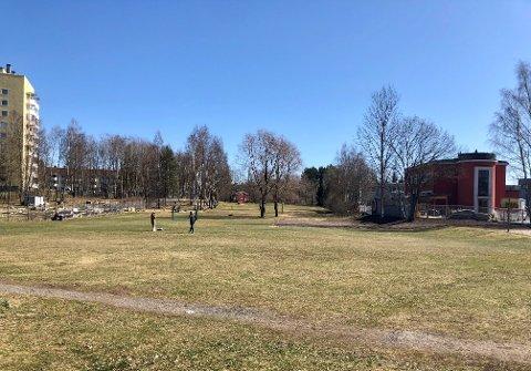 LAMBERTSETER: Et område ved Radiobølgen barnehage på sletta på Lambertseter er foreslått til inngjerdet hundepark.