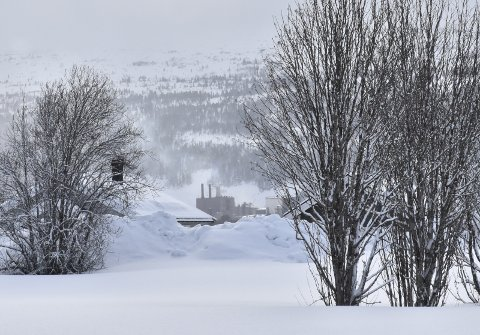 Mo Industripark sett fra Ytteren.