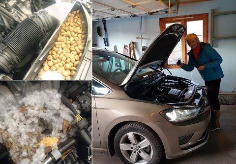 Dette fant mekanikerne i motorrommet på bilen til Lisbeth Sagen Lundin fra Nykirke.
