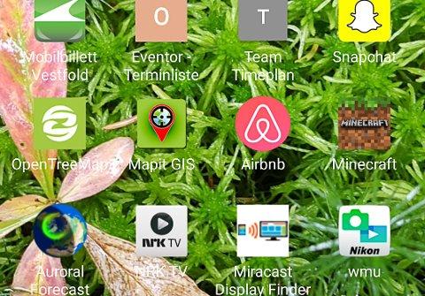 APPENES HJEM: På mobilen min fins det apper for mye rart. Noen brukes, andre er bare fyllmasse.