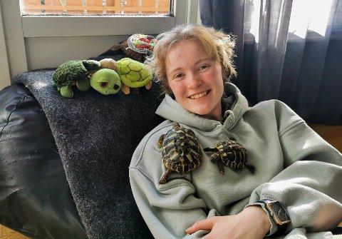 FAVORITT: I årevis måtte Linnéa Ellingsen (17) klare seg med kosedyrvarianter av skilpadder. Jula 2017 ble hun matmor til en levende. Her med Sammy (t.v.) og Roy-Shelly.