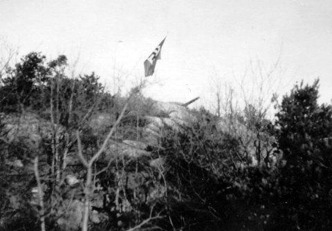NAZIFLAGG: Det tyske hakekorset vaier ved Greåker fort 1940-1945.