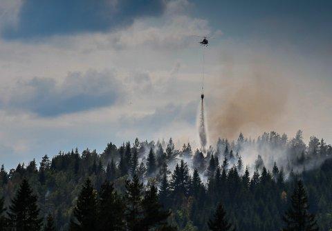 Skogbrannen på Vegårshei oppsto lørdag, og helikopter ble satt inn i slukningsarbeidet. Nå er brannen fullstenbdig slukket.