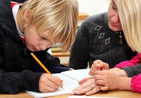 Kan du hjelpe til med leksene? Vang frivilligsentral treng hjelp til mange ulike fag, så her er alt av interesse.