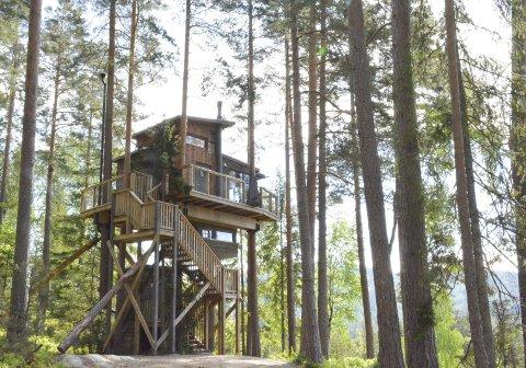 Populært overnattingssted: Trehyttene i Gjerstad har hatt fulle hytter gjennom hele sommeren. Nå ønsker de seg flere vintergjester
