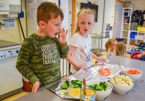 Etter en koronapandemi med matpakke i barnehagen, ga Fredrikstad kommune tirsdag klarsignal at barnehagene kan begynne å servere mat igjen. Oppvekstutvalget ga samme dag klar beskjed om at de forventer at dette skjer, Bildet av disse grønnsaksbevisste barna i Torsnes barnehage ble for øvrig tatt i 2019.