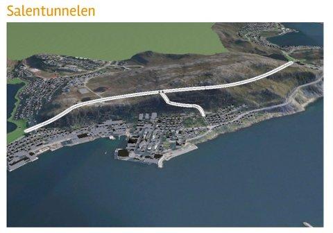 KUTTER: Tunnelprofil for Salentunnel reduseres og fartsgrensen justeres til 60 km/t. Også rømningstunnel kuttes da kravene ikke gjelder for tunneler med denne trafikkmengden. Det er også foreslått å flytte rundkjøring i fjell nærmere Jansvannet. Hauentunnelen blir da 60 meter kortere.