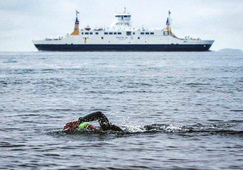 Sparte ferjebilletten: 65 personer valgte å svømme for egen maskin enn å ta båten over fra Horten til Moss, lørdag 9. juli. Den klassiske distansen ble en offisiell svømmekonkurranse i 2014. Foto: Per Bakke