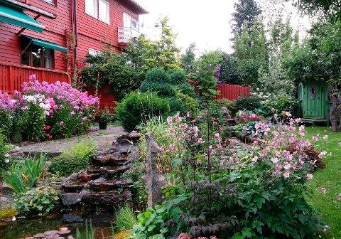 VINNERHAGE: Denne villahagen i Jarlsborgveien 13 var en av to vinnere i fjorårets hagekonkurranse. Nå kan du nominere hager til årets konkurranse.