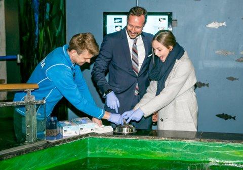 FORNØYD: Prinsesse Ingrid Alexandra fikk mate fiskene i tanken på Polaria. Og satte tydelig pris på opplevelsen.