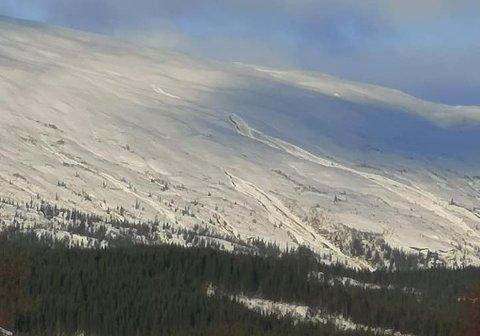 Bildet er tatt i dag og viser at det har gått skred på Innerstøtten (Snøfjellet) som ligger ved Langvatnet.